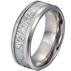 COI Titanium Beveled Edges Ring With Meteorite - JT3387
